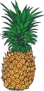 RSACWC Pineapple 1[1]